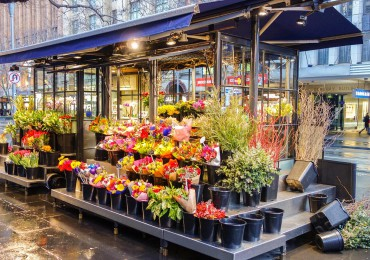 Magasin de fleur Caen
