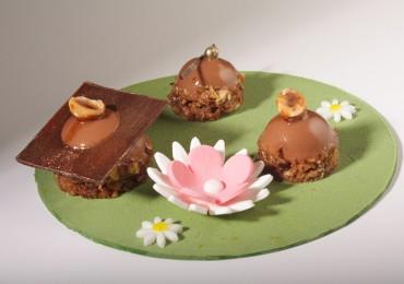 dessert jardin chocolaté